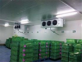 茶叶冷库储存方法
